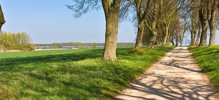 Pommernland reduziert die Verpackung